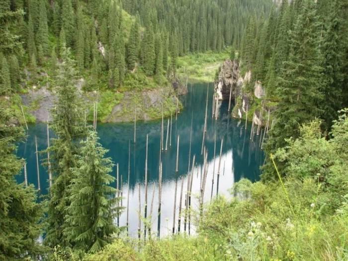 Hutan tenggelam di danau Kaindy