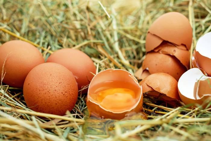 putih telur pelumas alami