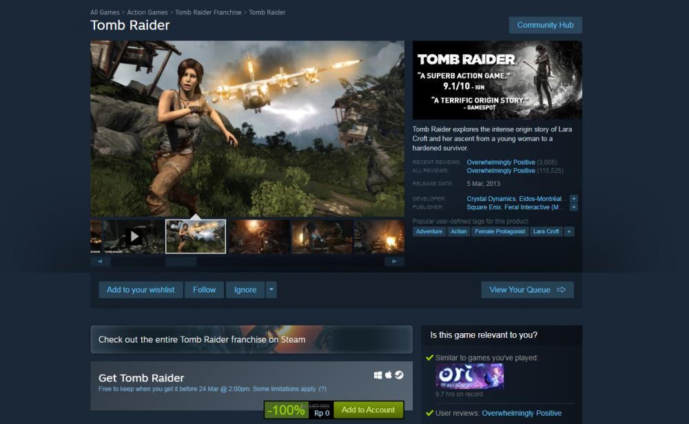 Tomb Raider 2013 (photo/Screenshot/Steam)