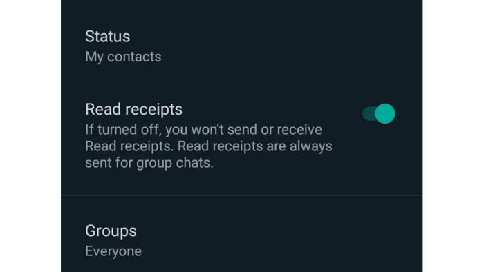Fitur Read Receipts di WhatsApp