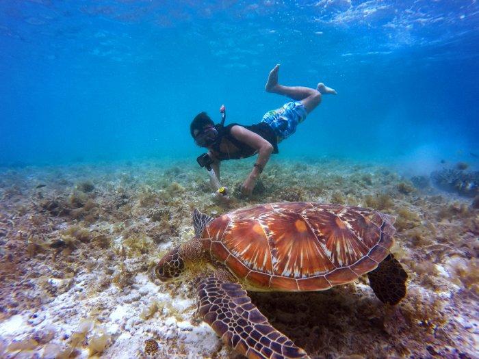 Pasca Air Tercemar Turis Kembali Snorkeling di Bintan