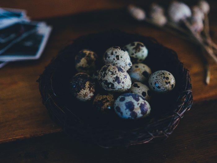 Kenali Kebaikan Telur Puyuh Si Kecil yang Punya Segudang Manfaat