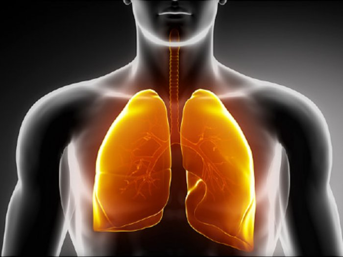 Pasien Virus Corona Meninggal karena Pneumonia Kenali Gejalanya