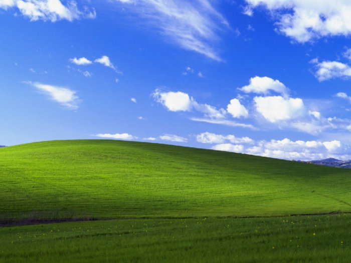 Kisah di Balik Wallpaper Legendaris Windows XP