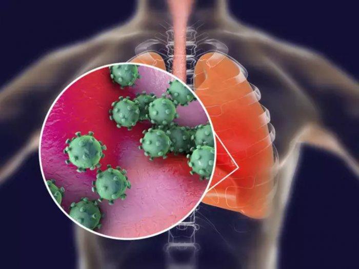 Tubuh Bisa Mematikan Virus seperti Ini Mekanismenya