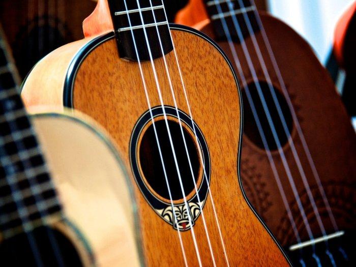 Efek Pandemi Corona Penjualan Alat Musik di AS Naik 50 Persen