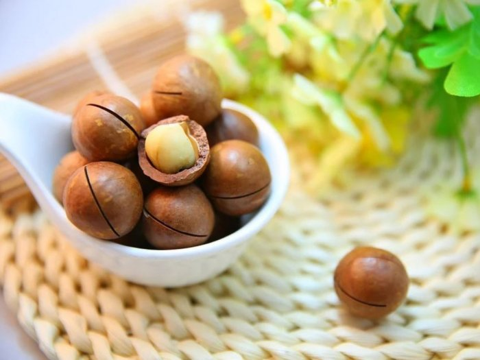 Kacang Macadamia yang Dijual dengan Harga Tinggi