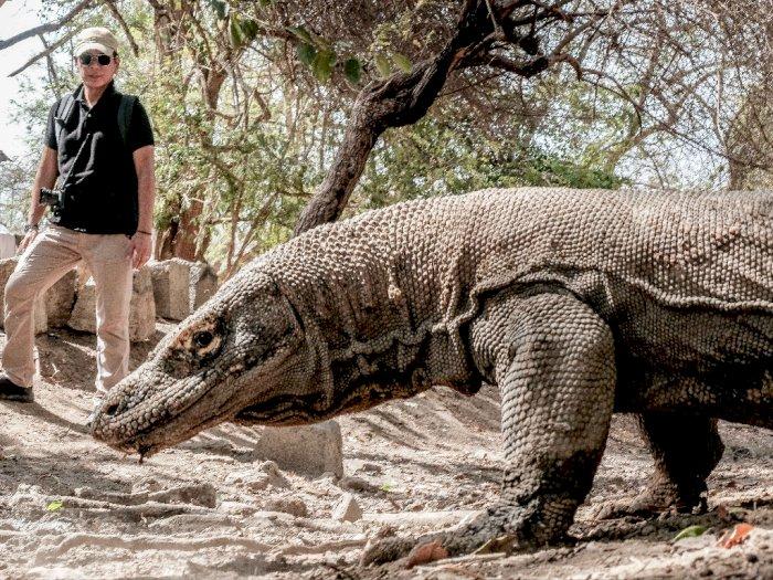 Taman Nasional Komodo Perluas Penerapan Sistem Registrasi Online untuk Wisatawan