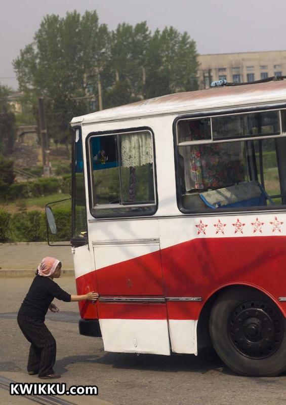 Kwikku, Bus