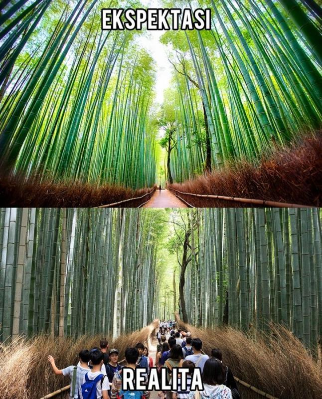 Kwikku, Hutan Bambu Arashiyama