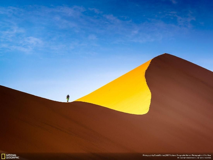 Kwikku, Tintin and The Dunes karya Daniel Burton