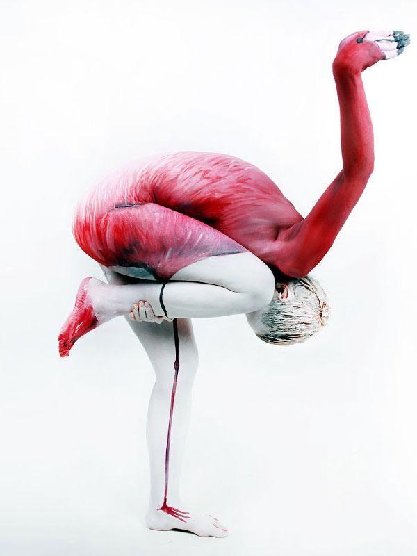 Kwikku, Burung Flamingo
