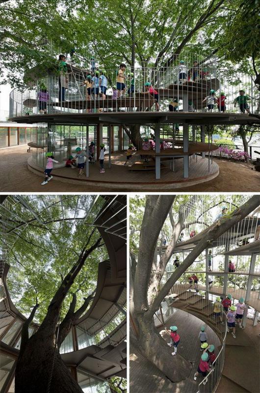 Kwikku, Sekolah Pohon