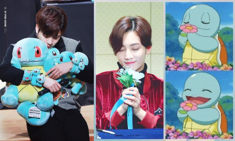 Kwikku, Jackson  GOT amp Jeong Han  SEVENTEEN  Squirtle
