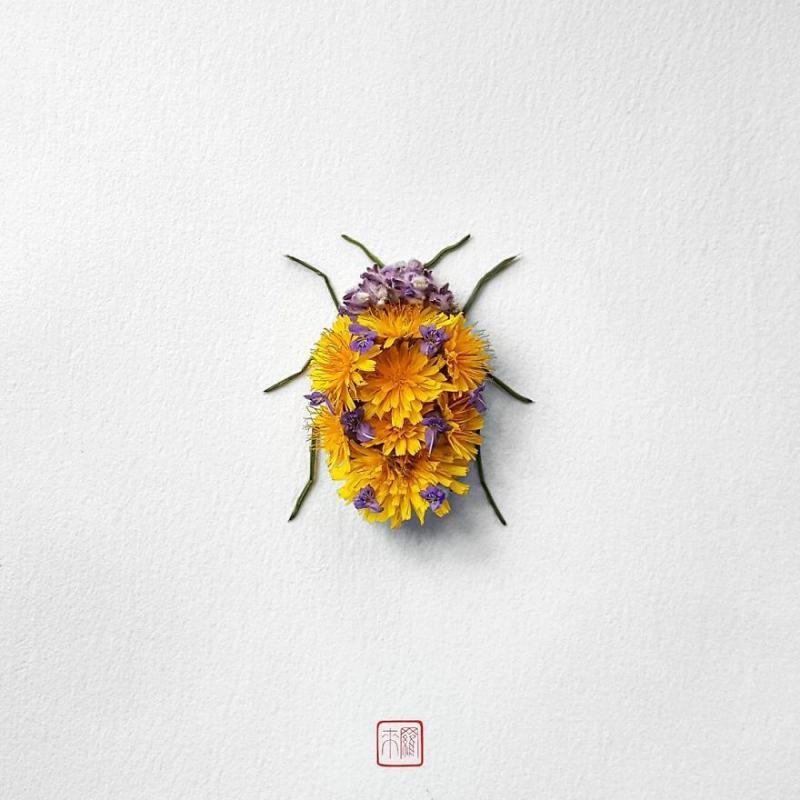 Kwikku, Ladybug