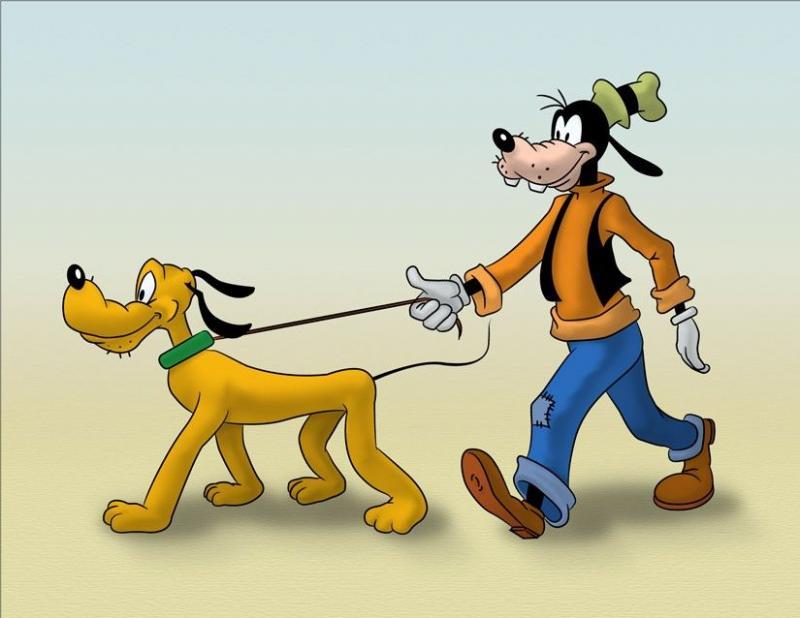 Kwikku, Ada lagi anjing pelihara anjing Yah Goofy si anjing yang pelihara Pluto