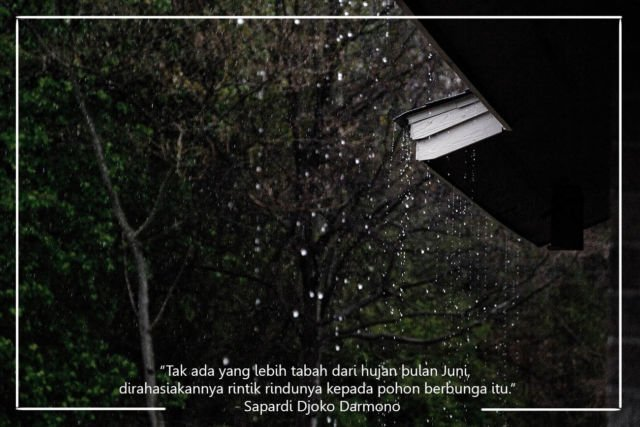 Kwikku, Quotes pertama datang dari Eyang Sapardi Meskipun sekarang bukan bulan Juni namun semua pasti setuju dengan suasana hujan yang digambarkan dalam kutipan