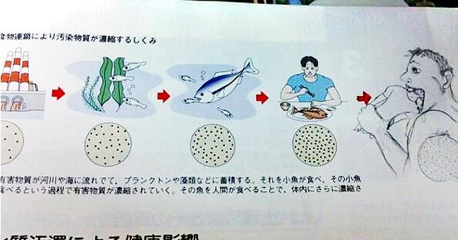 Kwikku, Maksudnya sih gambar rantai makanan Eh ternyata manusia juga dimakan sama raksasa