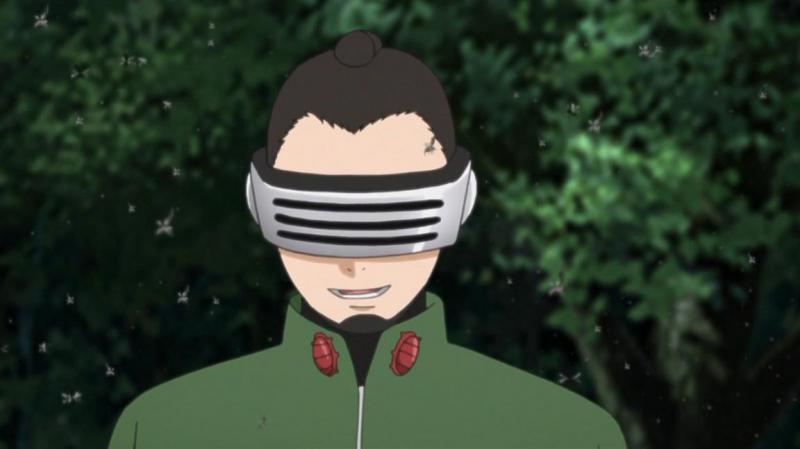Kwikku, Shino Aburame