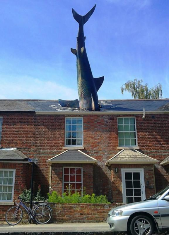 Kwikku, Headington Shark
