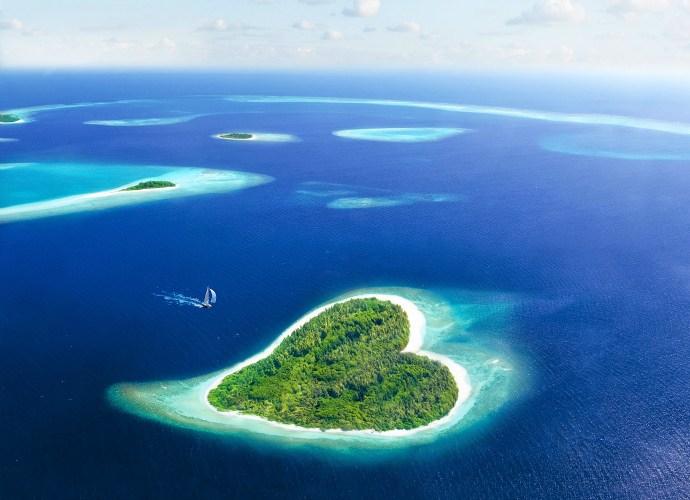 Kwikku, Pulau Tupai Perancis