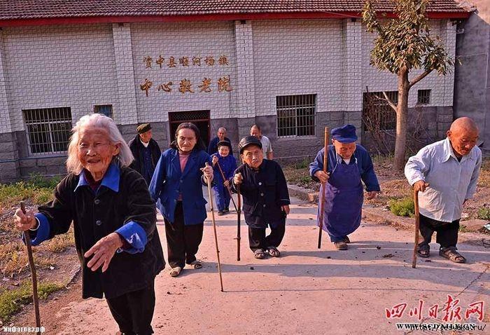 Kwikku, Desa Yangsi Tiongkok