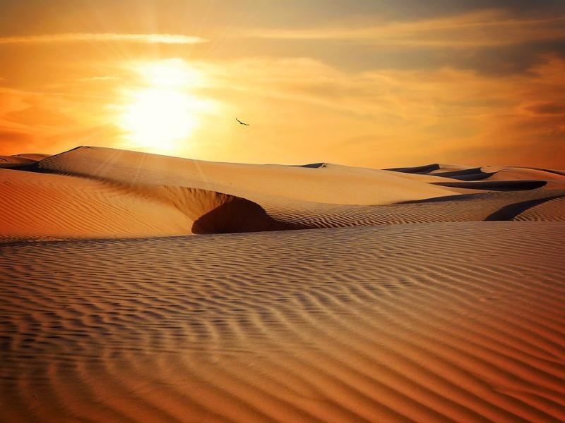 Kwikku, Padang pasir paling kering