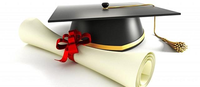 Kwikku, Banyak mendapat penghargaan doktor honoris causa