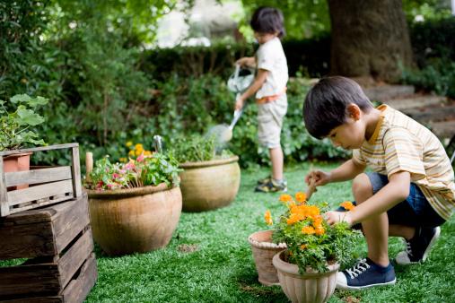 Kwikku, Mengajarkan kita untuk mencintai alam