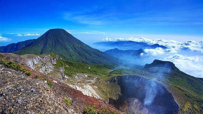 Kwikku, Gunung Gede Pangrango