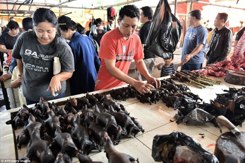 Kwikku, Dinobatkan Sebagai Pasar Paling Terseram Di Dunia