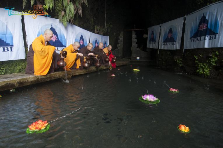 Kwikku, Umbul Jumprit Di Jawa Tengah
