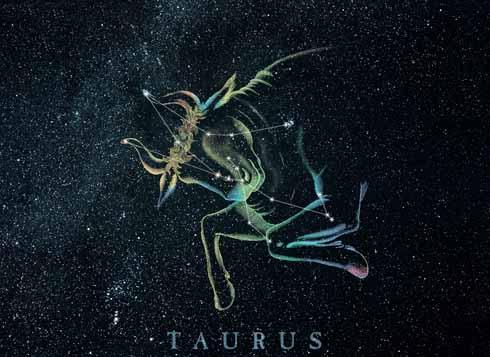 Kwikku, Taurus