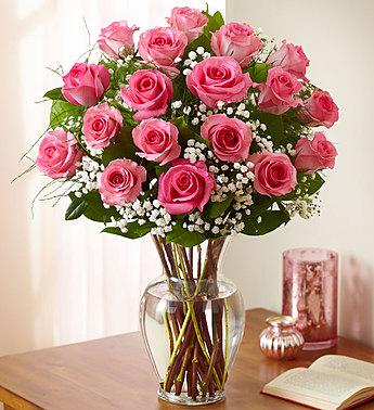 Kwikku, Mawar Merah Muda