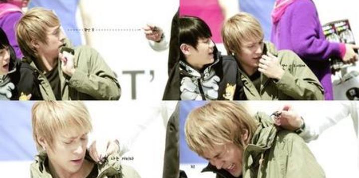 Kwikku, Ada juga member HIGHTLIGHT yang takut serangga dia adalah Dongwon Bahkan dia mengatakan akan menderita serangan jantung  setiap melihat serangga