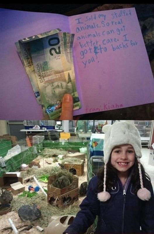 Kwikku, Menjual hasil jualan boneka demi menyumbangkan ke oraganisasi perlindungan satwa
