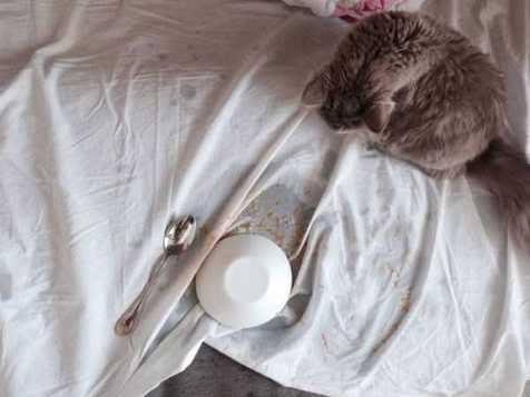 Kwikku, Siapa ini pelakunya Bakal kerja keras juga untuk membersihkan tempat tidurnya