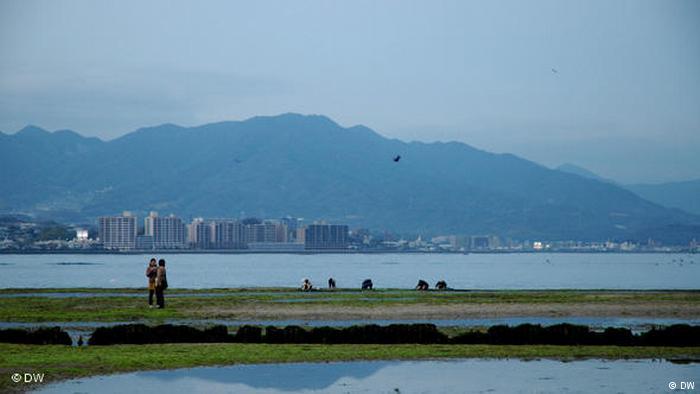 Kwikku, Jepang merupakan salah satu negara yang kecil namun menjadi negara ke dengan garis pantai terpanjang yang mencapai  km