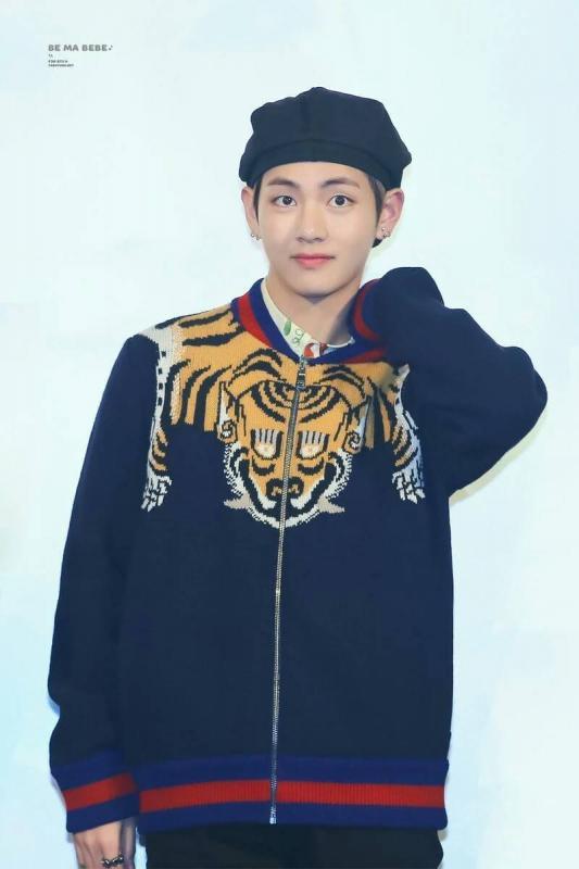 Kwikku, Tampaknya V benarbenar menyukai produk dari Gucci ya Saat premier drama Hwarang V juga memakai brand mahal tersebut dengan sweater harimaunya