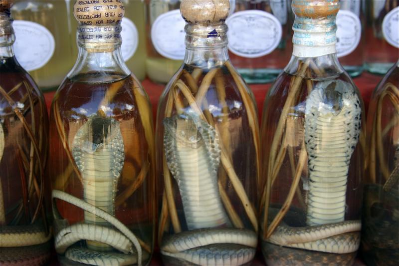 Kwikku, Oleholeh unik lain dari Vietnam yang bisa kamu beli adalah wine dari fermentasi ular seperti ini Duh Gimana ya rasanya