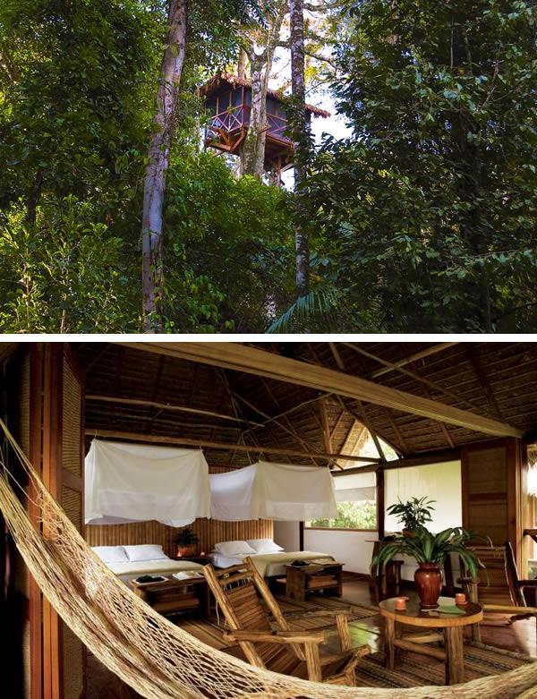 Kwikku, Hotel Inkaterra Canopy Three House berada di Peru Uniknya lagi hotel ini berada di bagian atas pohon kanopi