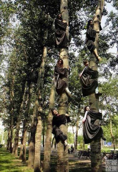 Kwikku, Atau pose ala koala disekitar pohon di sekolahmu juga bisa nih jadi objek foto Bikin ngakak deh