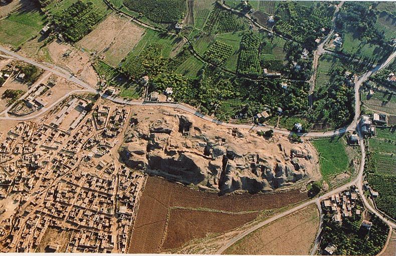 Kwikku, Dan Jericho menjadi kota tertua di dunia yang terletak di Palestina sudah dihuni sejak  SM  dan saat ini populasinya mencapai