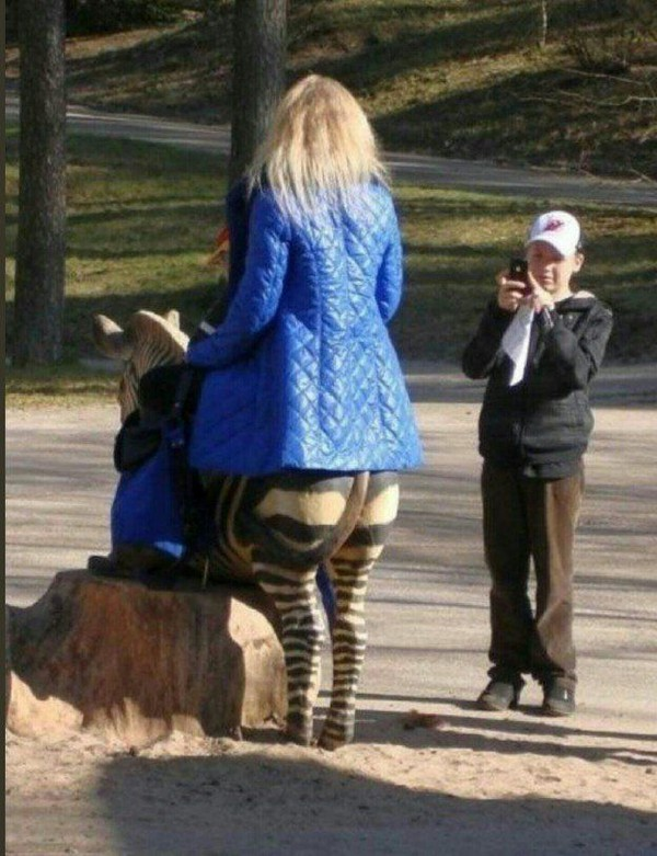 Kwikku, Momen ini memang bisa bikin ngakak ya Kita mungkin terheranheran apakah ada jelmaan nyata dari hewan zebra