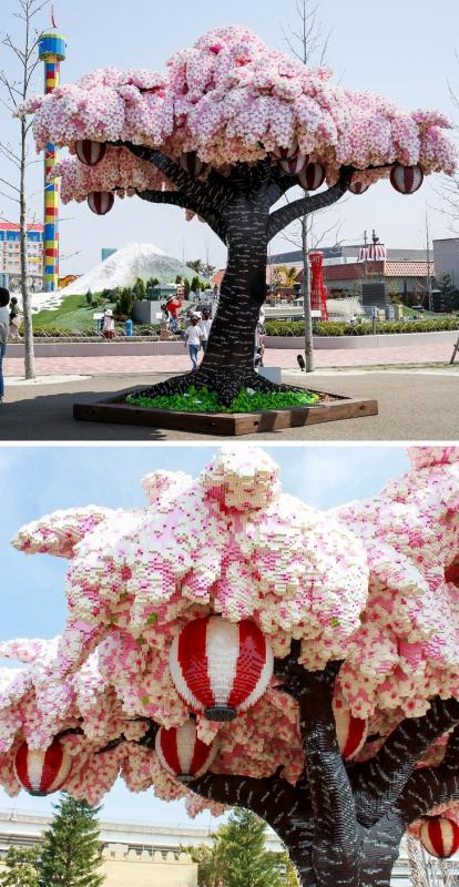 Kwikku, Beginilah kalau selalu ada orang yang terlalu kreatif mereka bisa membuat pohon sakura dari lego Pohon buatan ini terletak di Lego Land wajib mampir nih kalau ke Jepang
