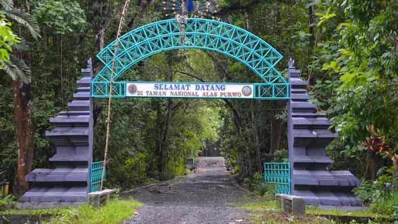 Kwikku, Alas Purwo Kabupaten Banyuwangi Jawa Timur