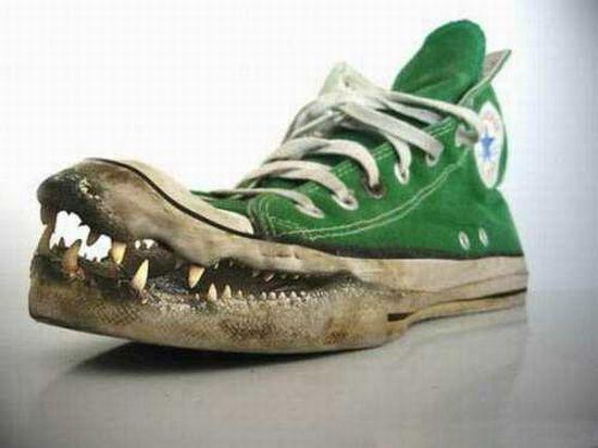 Kwikku, Croc Shoes Ini baru yang namanya The Real Croc