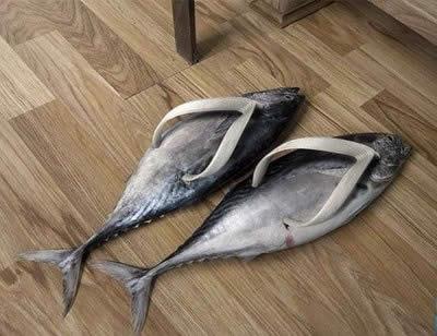 Kwikku, Fish Shoes Yaaah bau ikan dong ntar kaki boskuh