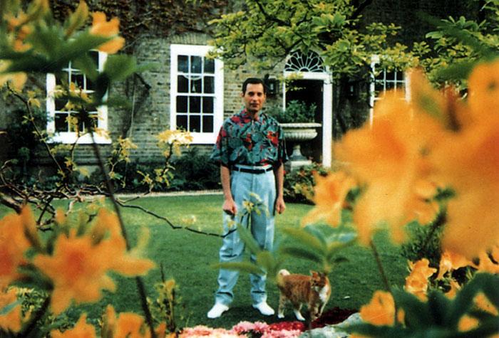 Kwikku, Freddie Mercury