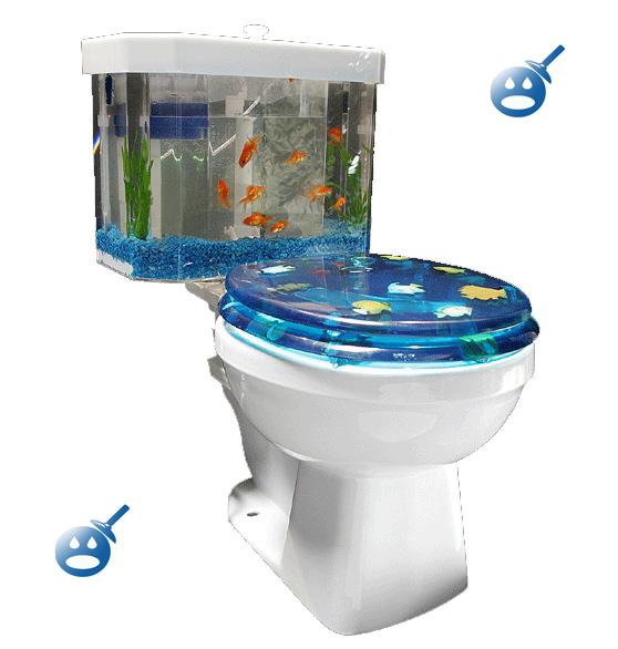 Kwikku, Toilet Aquarium